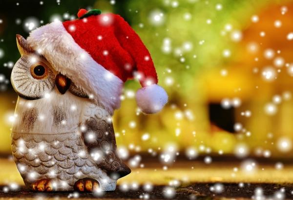 christmas-1906639_1920.jpg